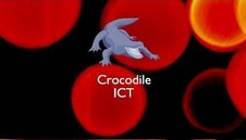 Crocodile ICT ------ 70MB